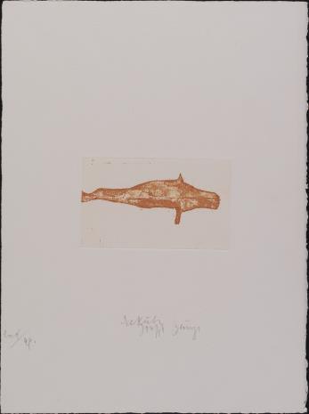 Joseph Beuys, Krowa morska, syrena [Seekuh]