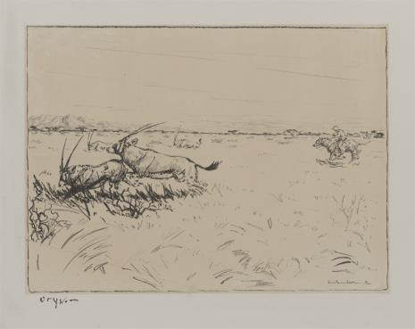 Dieter Aschenborn, Polowanie na zwierzęta