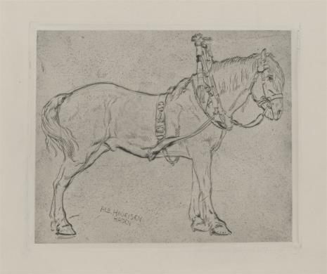 Albert Haueisen, Koń widziany z boku