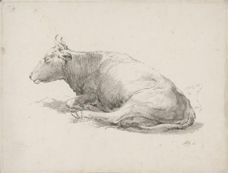 Adam von Bartsch, Krowa leżąca