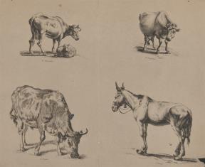 Studia trzech krów i jednego konia