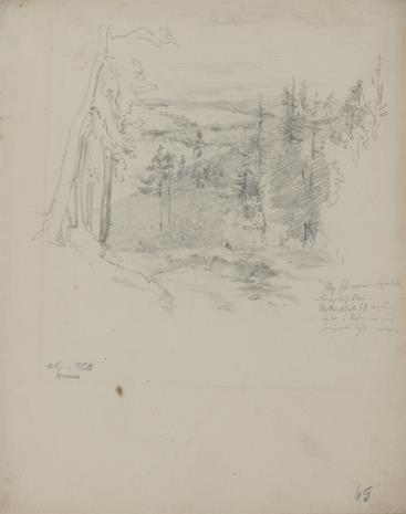 August von Wille, Krajobraz z zalesionymi wzniesieniami