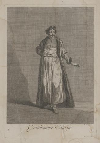 Bernard Baron, Szlachcic wołoski