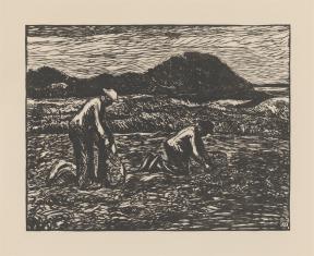 Sadzenie kartofli w okolicy Rentlingen