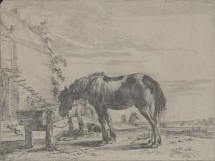 Koń stojący przy żłobie