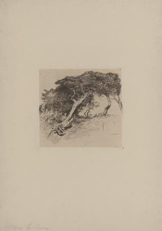 Fritz Voellmy, Drzewa
