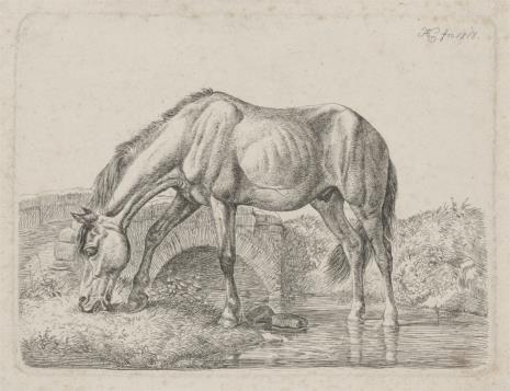 Johann Adam Klein, Koń pasący się nad strumieniem