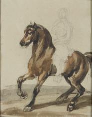 Koń z jeźdzcem