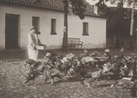 Jan Bułhak, Bez tytułu