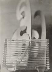 Kompozycja fotograficzna (krzywiki i szklana cegła)