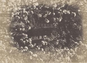 Ogród Misjonarzy