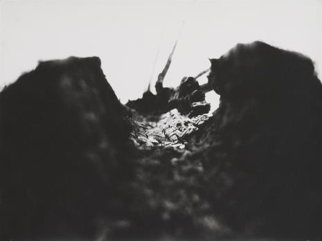 Andrzej Strumiłło, Spalone drzewo z cyklu