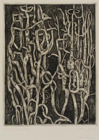 Leszek Rózga, Drzewiaste