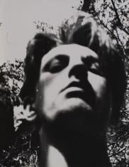 Autoportret w plenerze