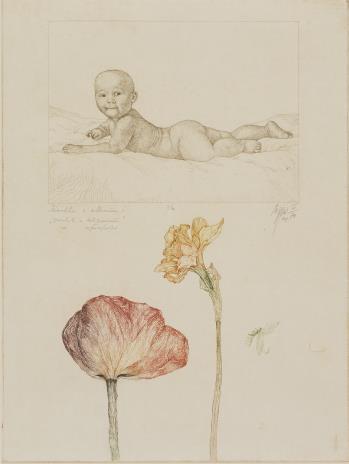 Leszek Rózga, Żonkil z tulipanem z cyklu