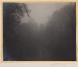 Ogród Saski we mgle