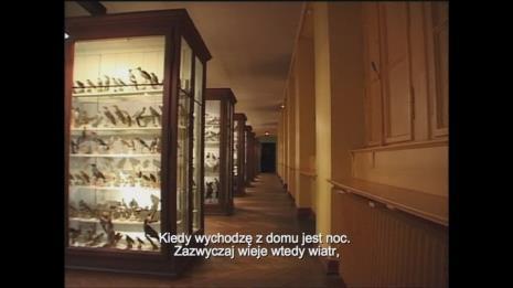 Agnieszka Chojnacka, Krótka historia lotu