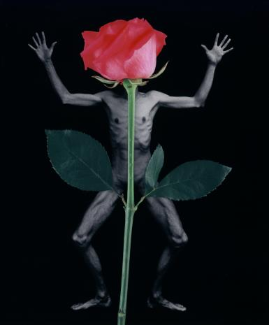 Zofia Kulik, Libera i kwiaty nr 7