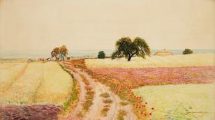 Droga do wsi