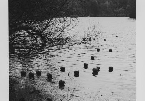 Zorka Ságlová , Dokumentacja działania zatytułowanego: Házení míčů do průhonického rybníka Bořín / Rzucanie piłek do jeziora Bořín w Průhonicach