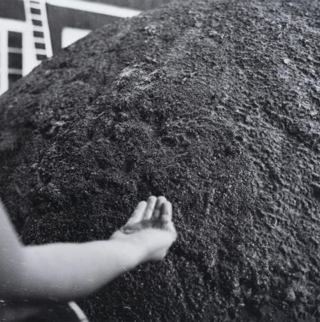 Teresa Murak, Z cyklu: Rzeźba dla Ziemi (Równowaga balansu)