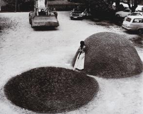 Z cyklu: Rzeźba dla Ziemi (Równowaga balansu)