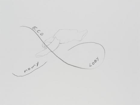 Simone Forti, Eco Nomy Logy, z serii News Animation