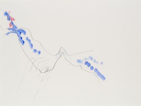 Simone Forti, Hand in Stream, z serii News Animation