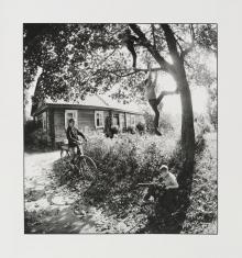Czarno-biała fotografia. Scena rodzajowa na wiejskiej drodze. 4 chłopców bawi się przed drewnianą chatą. Jeden jedzie na rowerze, widać jego cień na drodze. Dwoje wspina się na drzewo. Czwarty chłopiec siedzi pod konarem z patykiem. Świeci słońce.
