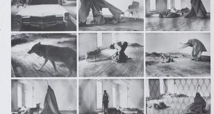 Przewodnik po sztuce. Joseph Beuys