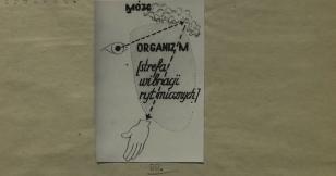 Przewodnik po sztuce. Teoria widzenia cz.II