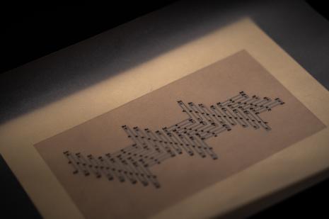 Prototypy / 02: Codex Subpartum
