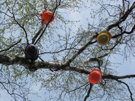 Praca Cezarego Bodzianowskiego w ogrodzie Akademii Muzycznej