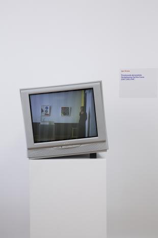 Dokumentacja wystawy - praca Igora Krenza