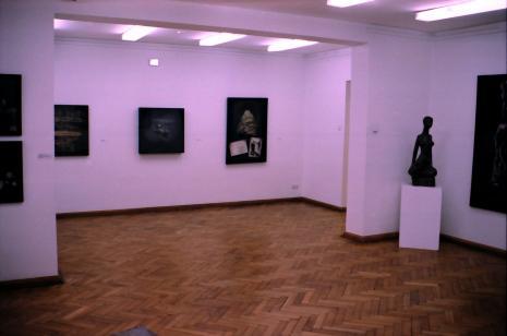 Ekspozycja w salach budynku B ms przy ul. Więckowskiego 36, prace m.in. Tadeusza Kantora i Aliny Szapocznikow